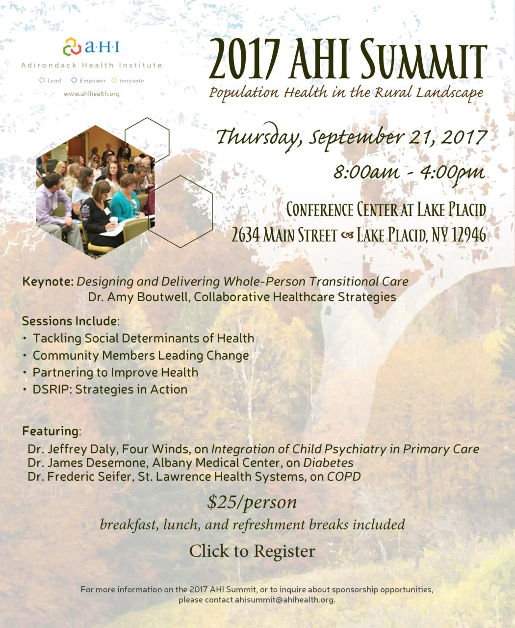 AHI Summit   Adirondack Health Institute